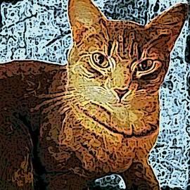 Sherry Gombert - Fireside Friend