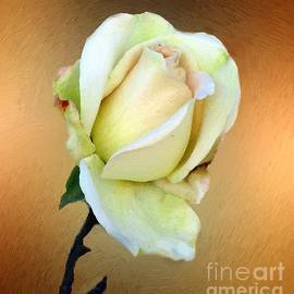 RC DeWinter - First Blush Unfolding