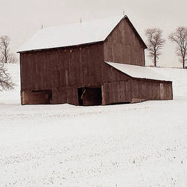 Barry Cleveland - First Snow