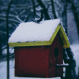 Frank J Casella - First Snow on the Roof
