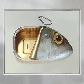 Art Grafts - Fish Can - Acrylic Print in a unique virtual frame