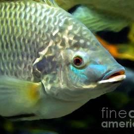 Mel Steinhauer - Fish Lips