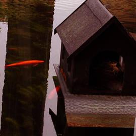 Colette V Hera  Guggenheim  - Fish Pond Copenhagen