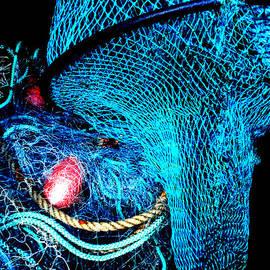 Colette V Hera  Guggenheim  - Fish Robe Net Play