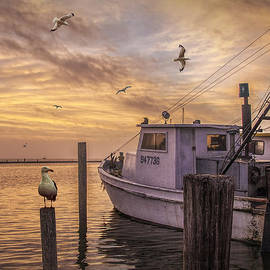 Randall Nyhof - Fishing Boat and Gulls at Aransas Pass Harbor