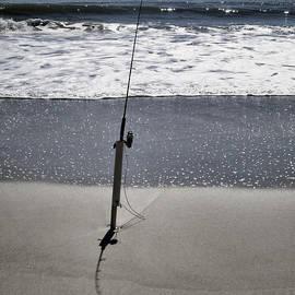 Patricia Januszkiewicz - Fishing Rod