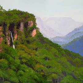 Anne Gardner - Fitzroy Falls