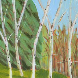 Alexandra Schaefers - Five Birches