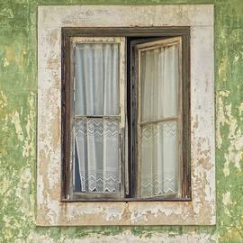 David Letts - Flaking Wood Window