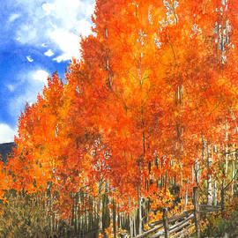 Barbara Jewell - Flaming Aspens