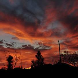 Paulette B Wright - Flaming Sunset