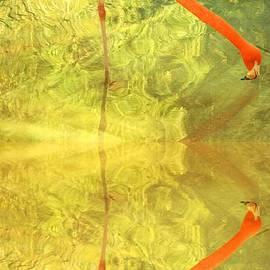 Kris Hiemstra - Flamingo Fantasy