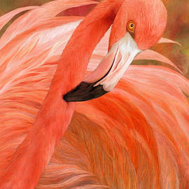 Carol Cavalaris - Flamingo - Spirit Of Balance