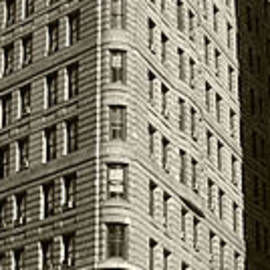 David Bearden - Flatiron in Sepia