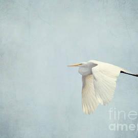 Kerri Farley - Flight of the Egret 2