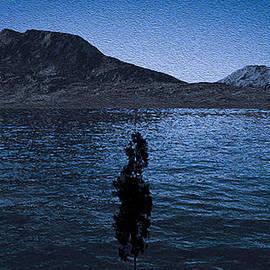 Martin Wall - Flood at Twilight