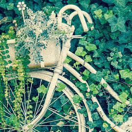 Nancy Harrison - Floral Biker