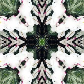 Kathleen Struckle - Floral Fantasy