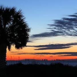 JC Findley - Florida