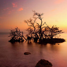 Mike  Dawson - Florida Keys Sunset