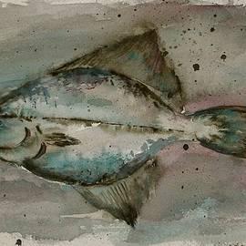 Carolyn Doe - Flounder