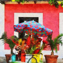Susan Savad - Flower Cart San Juan Puerto Rico