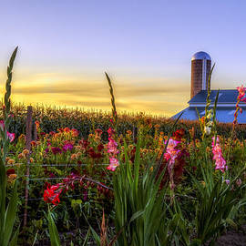 Mark Papke - Flower farm