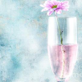 Lori Frostad - Flower in the Drink