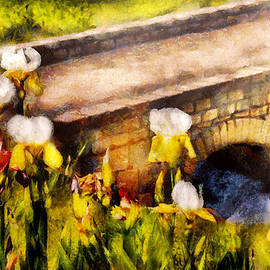 Mike Savad - Flower - Iris - Irises by the bridge