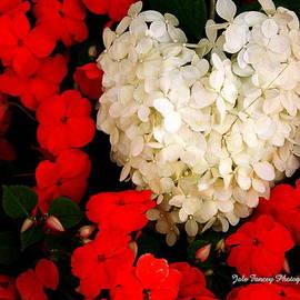 Jale  Fancey - Flower of my Heart