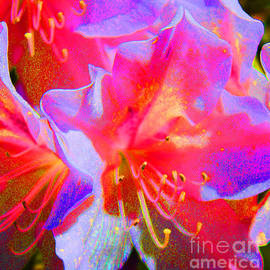 Susan E Robertson - Flower Power