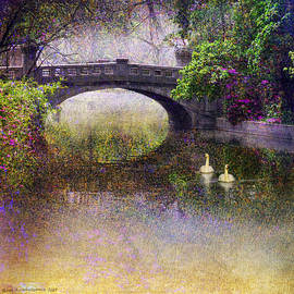 R christopher Vest - Flowered Park Bridge And Swans