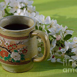 Luv Photography - Japanese Cherry Tree Blossom And A Cup Of Tea