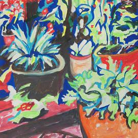 Esther Newman-Cohen - Flowers Pots on a Wooden Deck