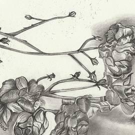 Wraymona Low - Flowers