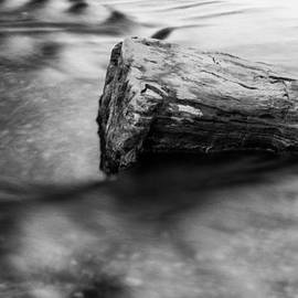 Shelby  Young - Flowing Water - Black and White