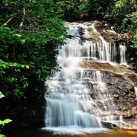 Elvis Vaughn - Flowing Water