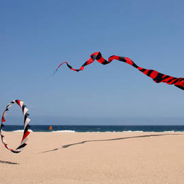Christine Till - Fly a kite - Old hobby reborn