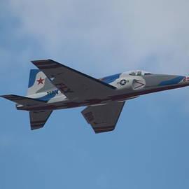 David S Reynolds - Fly BVM