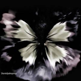 Sherri  Of Palm Springs -  Butterfly Art  Fly Free Little Butterfly