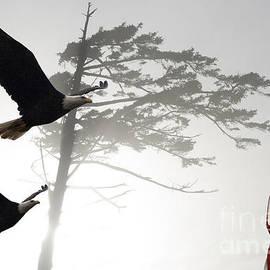 Bob Christopher - Fly Like An Eagle