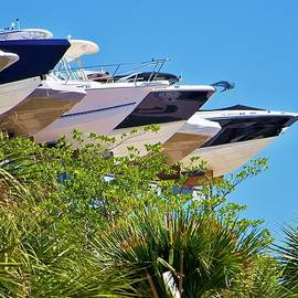 Chuck  Hicks - Flying Boats