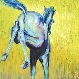 Sally Buffington - Foal At Play