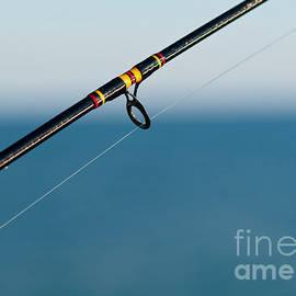Les Palenik - Focus on fishing