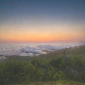 At Lands End Photography - Fog on Cadillac Mountain