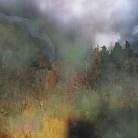 Barbara D Richards - Fog on the Mountain