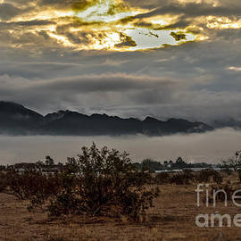 Robert Bales - Fog On The Sonaran Desert