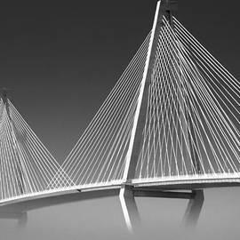 Zak Collins - Fog Under Ravenel Bridge