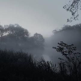 Angie Tirado - Foggy Dawn - Holmdel Park