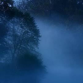Angie Tirado - Foggy Dawn III- Holmdel Park